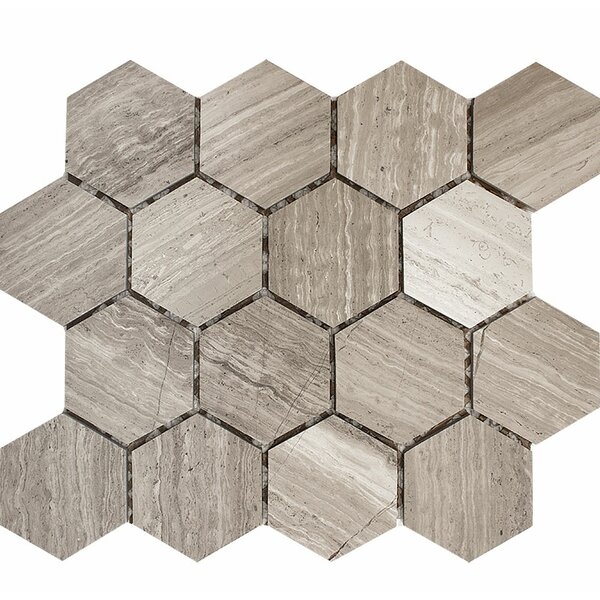 Wood Grain Hexagon 3 x 3 Stone Mosaic Tile in Gray Polished by Parvatile