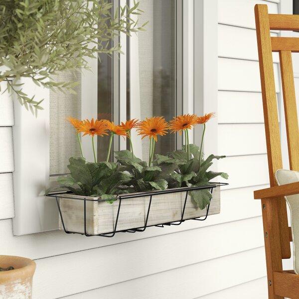 Tiana Adjustable Flower Rectangular Metal Window Box Planter by Gracie Oaks