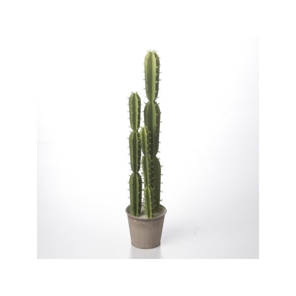 Anderson Metal Cactus Decoration by Union Rustic