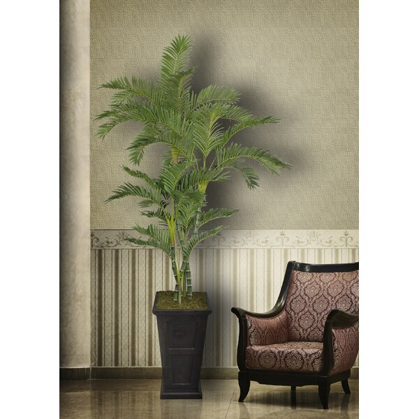 Tall Palm Tree in Planter by Bayou Breeze