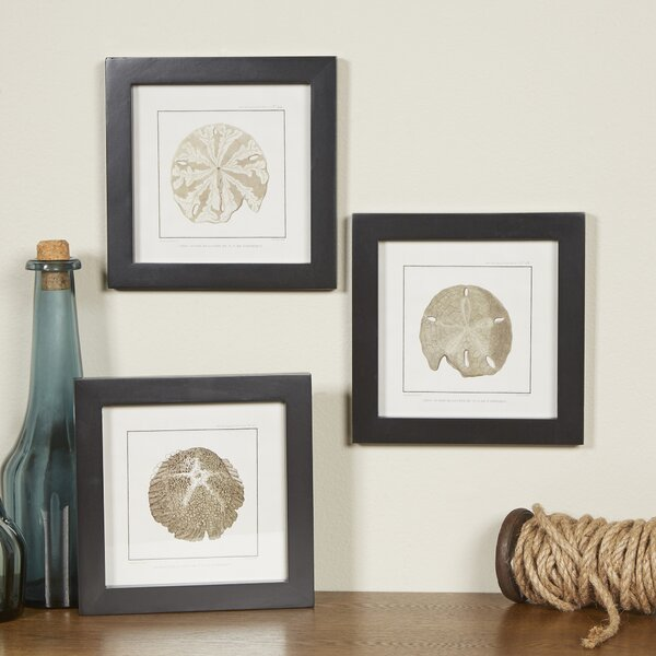 3 Piece Framed Graphic Art Set by Bay Isle Home