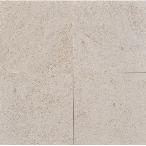 12 x 12 Limestone Field Tile in Sable by The Bella Collection