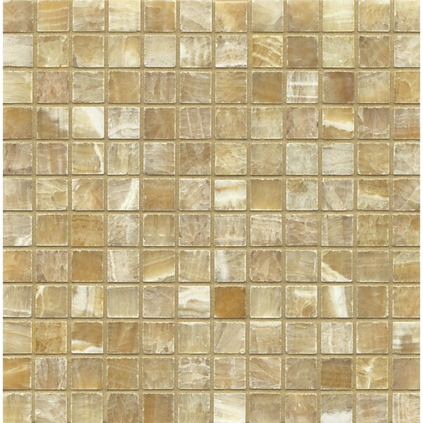 Onyx 1 x 1 Marble Mosaic Tile in Sweet Honey by Bedrosians