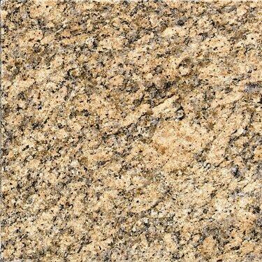12 x 12 Granite Field Tile in Giallo Veneziano by MSI