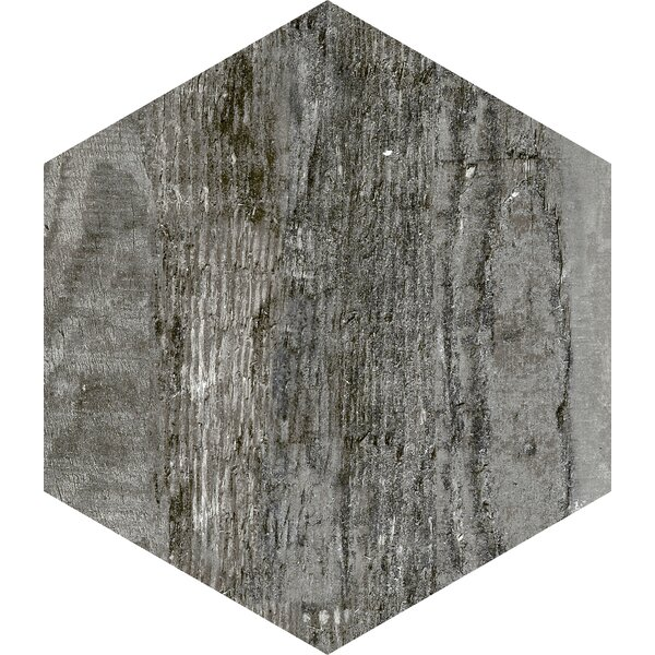 Docklight Hexagon 9.5 x 11 Porcelain Wood Tile in Wind by Parvatile