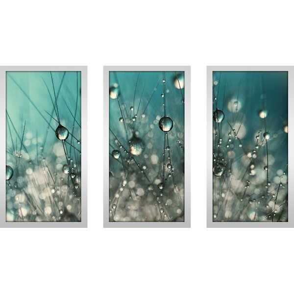 Crazy Cactus Sparkles by Sharon Johnstone 3 Piece Framed Graphic Art Set Set by Picture Perfect International