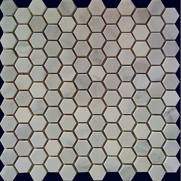 Hexagon 1 x 1 Natural Stone Mosaic Tile in White Statuary by Luxsurface