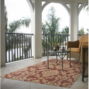 Fern Classic Scroll Burgundy Indoor/Outdoor Area Rug by Alcott Hill