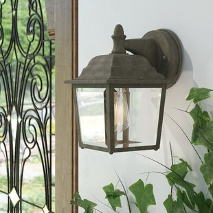 Inexpensive Steverson 1-Light Outdoor Wall Lantern By Charlton Home