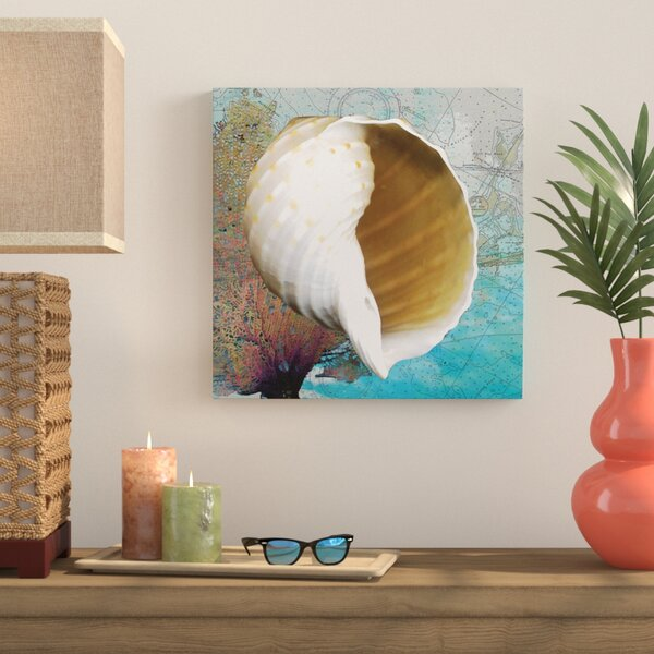 Shell and Chart I Graphic Art on Wrapped Canvas by Bay Isle Home