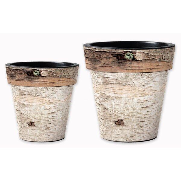 2-Piece Pot Planter Set by Studio M