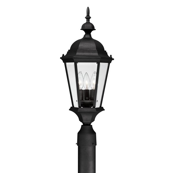 Hounsfield Outdoor 3-Light Lantern Head by Alcott Hill