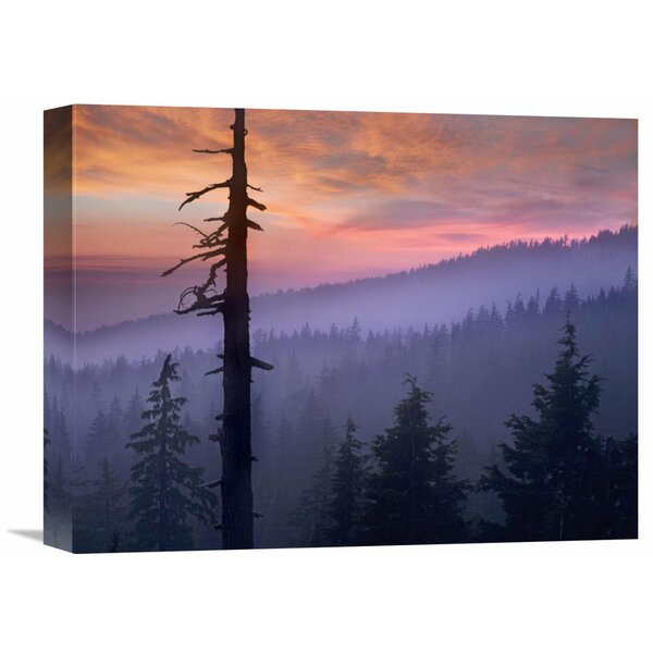 Nature Photographs Sunset Over Forest, Crater Lake National Park, Oreon by Tim Fitzharris Photographic Print on Wrapped Canvas by Global Gallery