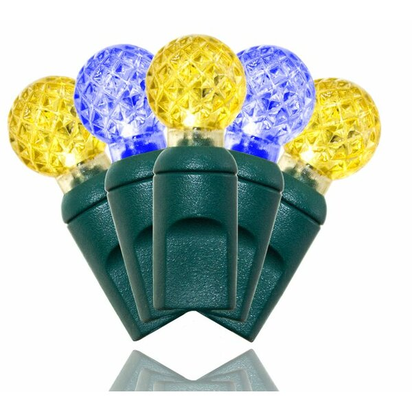 Standard 50L Yellow and Blue Lights (Set of 2) by Queens of Christmas