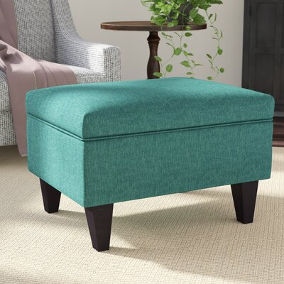 Fantastic Winston Porter Zaylee Storage Ottoman Color Light Blue Squirreltailoven Fun Painted Chair Ideas Images Squirreltailovenorg