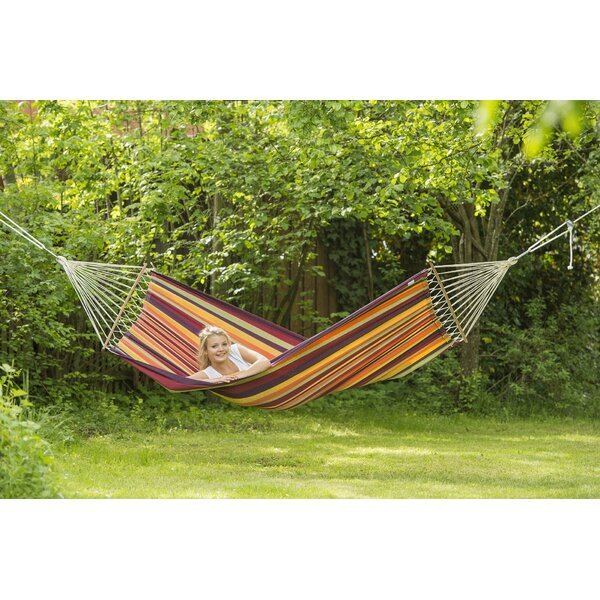 Daryl Striped Tree Hammock by Ivy Bronx