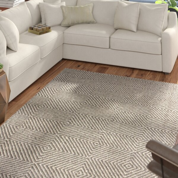 Marcelo Flat Woven Cotton Gray Area Rug by Mercury Row