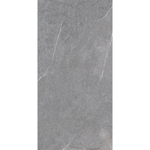 Lifestone 12 x 24 Porcelain Field Tile in Medium Gray by Madrid Ceramics