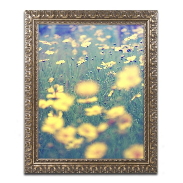 Field of Dreams by Beata Czyzowska Young Framed Photographic Print by Trademark Fine Art