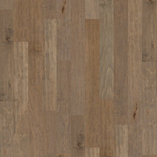Aurora 5 Engineered Maple Hardwood Flooring in Hammond by Shaw Floors