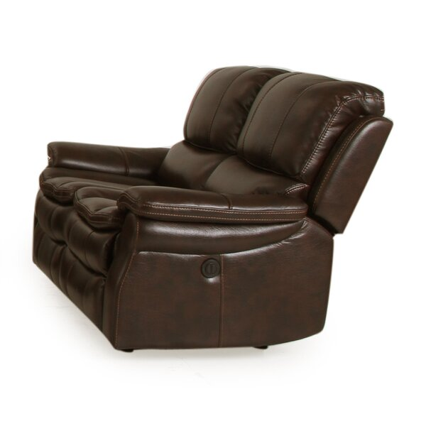 Fontanelle Dual Power Reclining Loveseat by Latitude Run