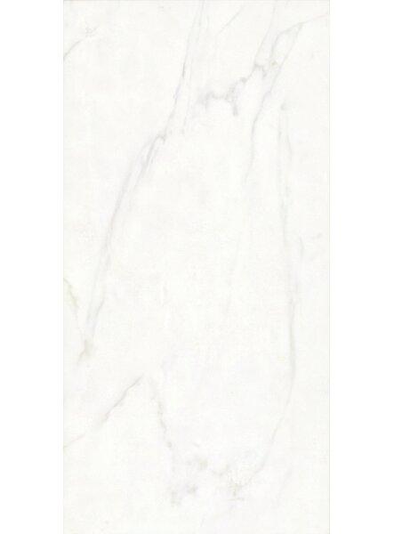 Festiva 12 x 24 Porcelain Field Tile in Glossy White by Bella Via