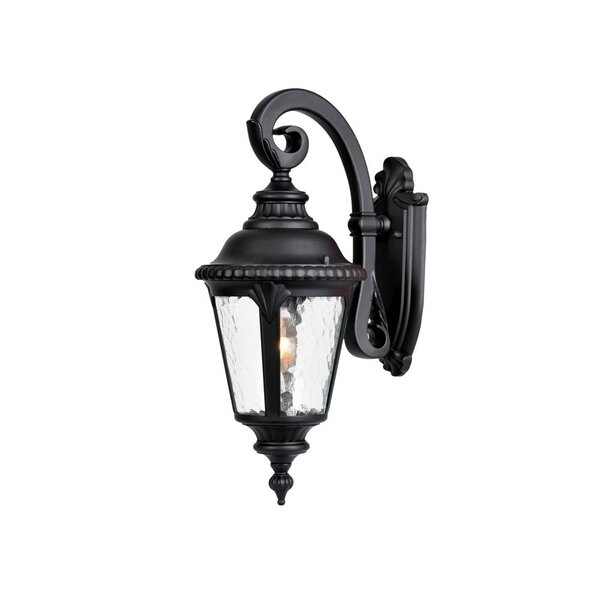 Appel 1-Light Outdoor Wall Lantern by Astoria Grand