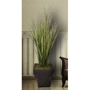 Artificial tall grass outdoor wayfair tall onion grass in fiberstone planter workwithnaturefo