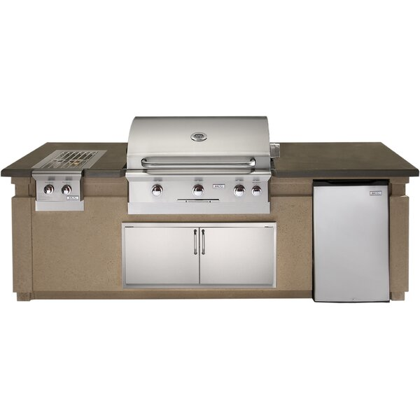 Built-In Gas Grill With Side Burner by American Outdoor Grill
