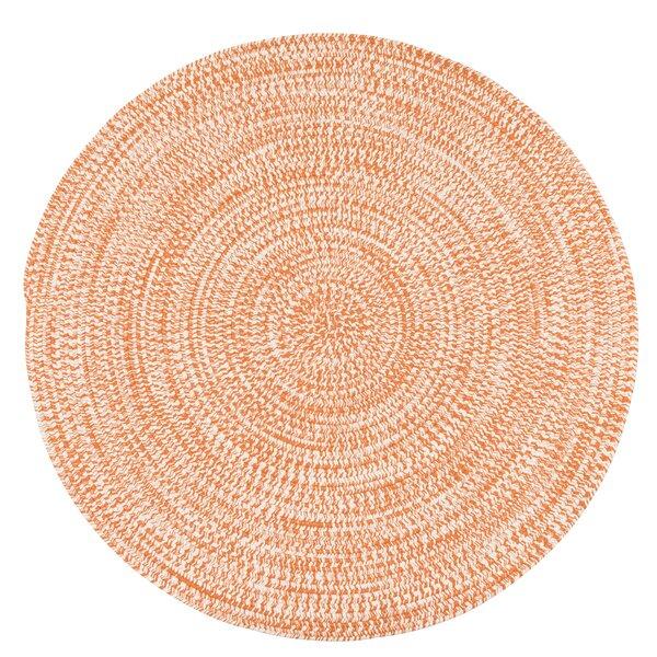 Longe Tweed Hand-Braided Rusted Orange Indoor/Outdoor Area Rug by Winston Porter