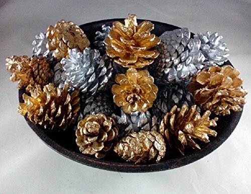 Hand Painted Pine Cone Set by Gracie Oaks