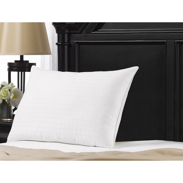 Cassiopeia Gel Fiber Pillow by Alwyn Home