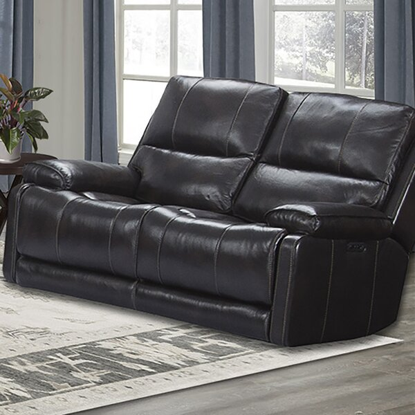 Review Zev Reclining Loveseat