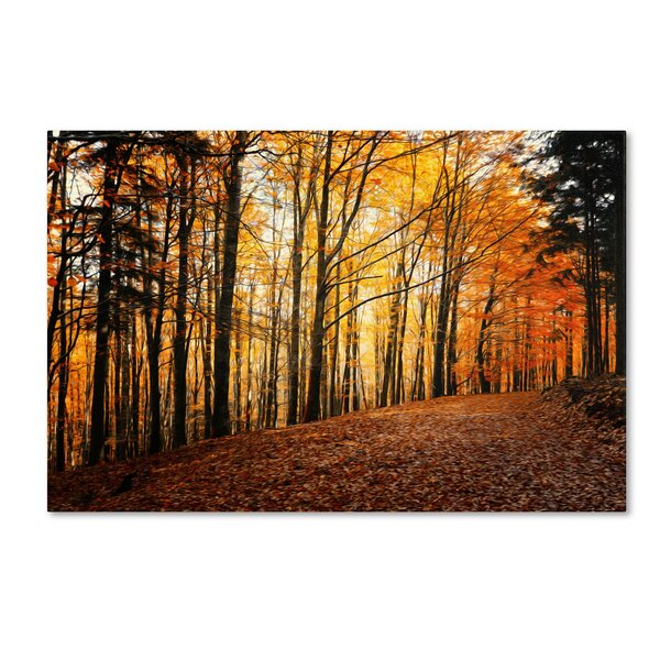 Autumn Leaves Pathway by Philippe Sainte-Laudy Photographic Print on Wrapped Canvas by Trademark Fine Art