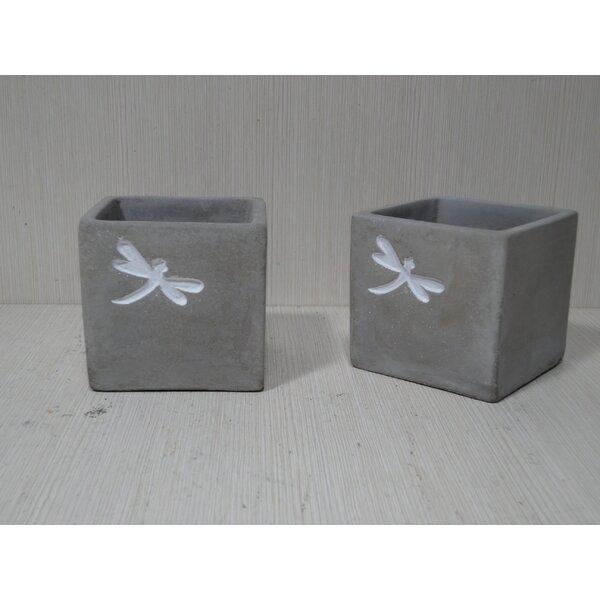 Square Concrete Pot Planter (Set of 2) by Kasamodern