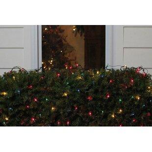 Outdoor christmas net lights wayfair save aloadofball Image collections