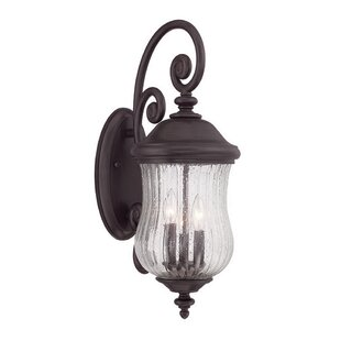 Reviews Berwyck 3-Light Outdoor Wall Lantern By Fleur De Lis Living