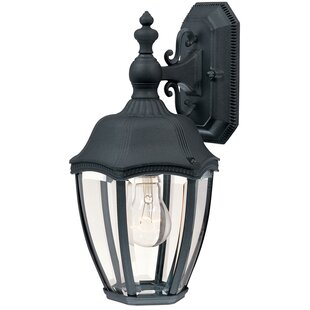 Reviews Teri Traditional 1-Light Outdoor Wall Lantern By Bloomsbury Market