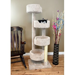 Cat Trees & Condos You'll | Wayfair on easy to build bee hive, easy to build furniture, easy to build coffee table, easy to build garden, colorful cat house, easy to build computer desk, realistic cat house, easy to build bench, easy to build bird cages, easy to build dog kennels, easy to build chair, easy to build barn, easy to build boat, easy to build chest, easy to build cabin, clean cat house, easy to build shed, build your own cat house, easy to build toys, fast cat house,