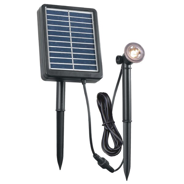 Solar 1 Light LED Pathway Light by Wildon Home ®