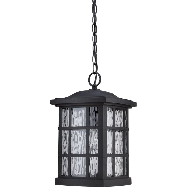 Lockett 1-Light Outdoor Hanging Lantern by Brayden Studio