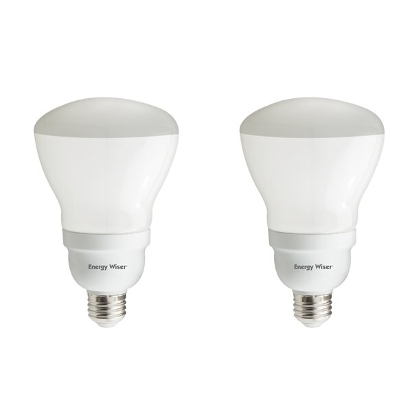 15W E26 CFL Light Bulb Frosted (Set of 2) by Bulbrite Industries
