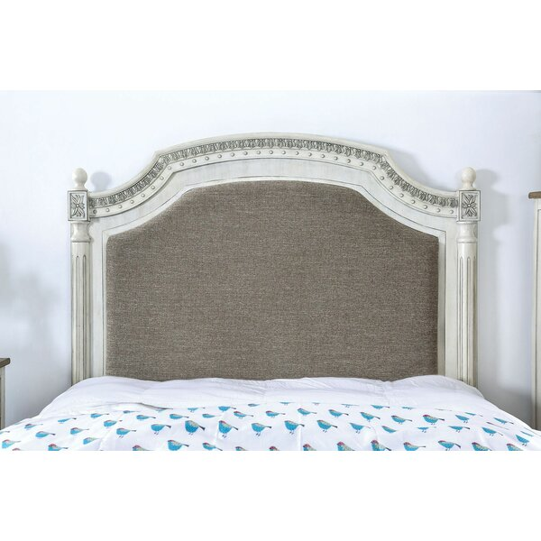 Great price Selene Upholstered Standard Bed By One Allium Way Cheap