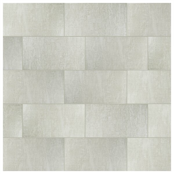 Magni 11.75 x 23.63 Porcelain Field Tile in Gray by EliteTile