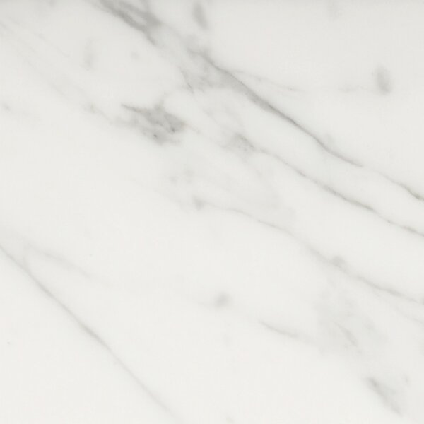 Natural Stone Marble 12 x 12 Field Tile in Bianco Nantes by Emser Tile
