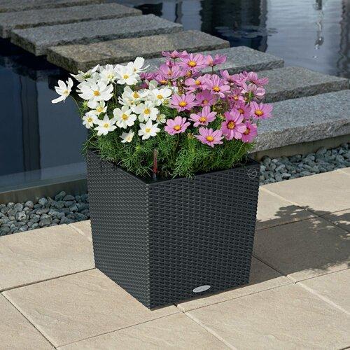 Blumenkübel aus Rattan mit Bewässerungssystem Lechuza Farbe: Granit  Größe: 30 cm H x 30 cm B x 30 cm T   Dekoration > Dekopflanzen > Pflanzenkübel   Lechuza
