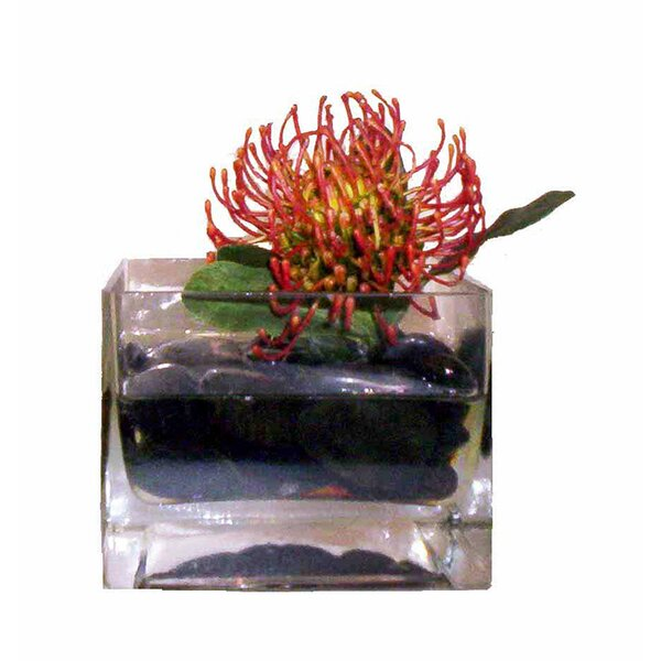 Faux Protea in Glass Vase by Creative Branch
