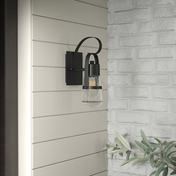 Lisabeth 1-Light Outdoor Sconce by Williston Forge