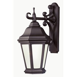 Guide to buy Theodore 2-Light Outdoor Wall Lantern By Darby Home Co