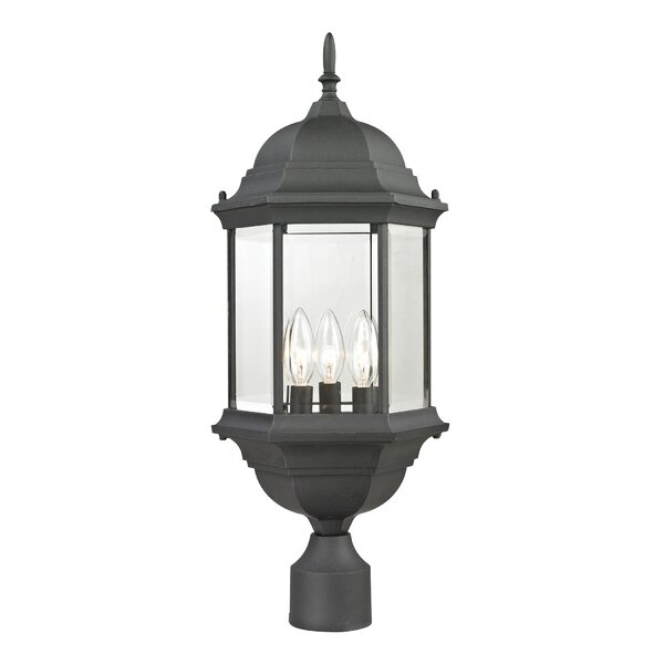 Dipaolo Medium 1-Light Lantern Head by Charlton Home